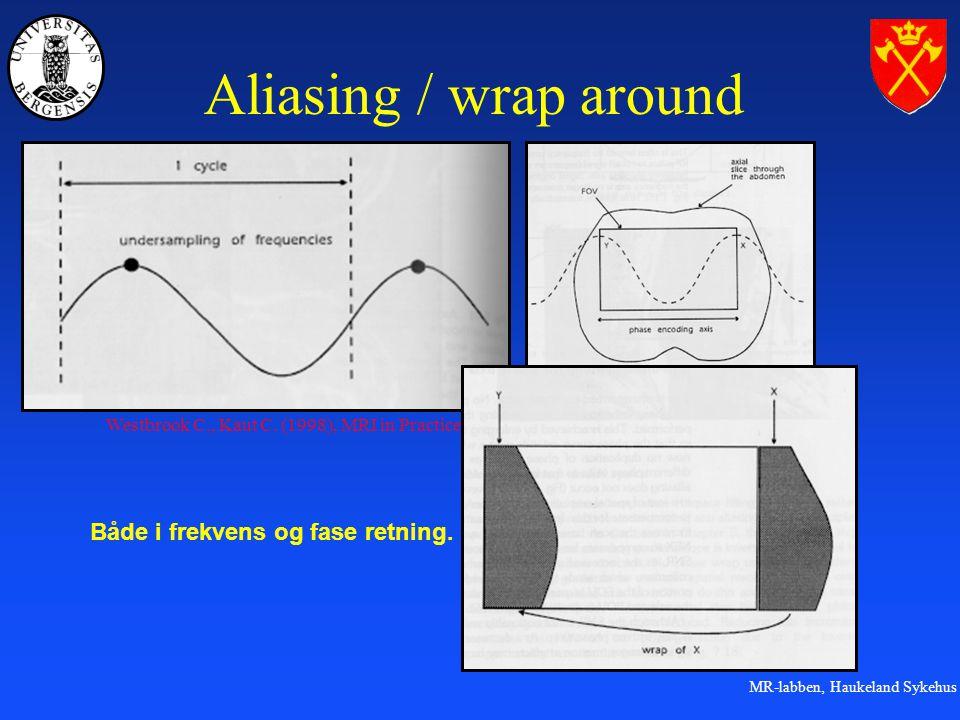 Aliasing / wrap around Både i frekvens og fase retning.