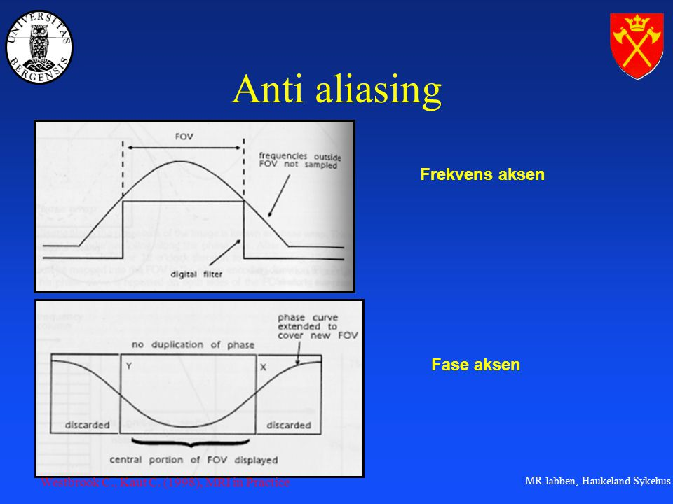 Anti aliasing Frekvens aksen Fase aksen