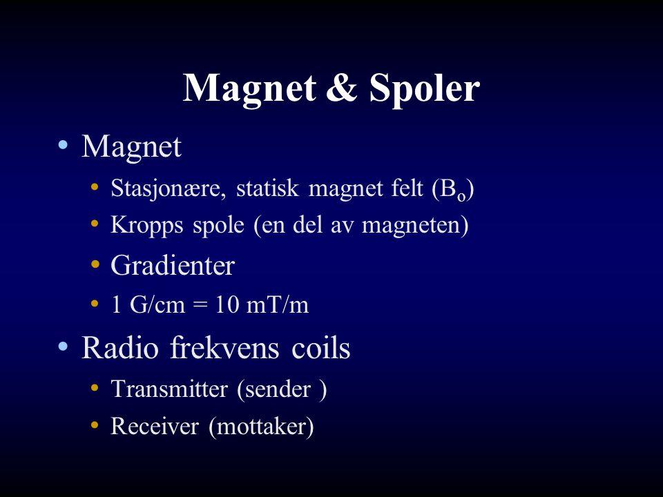 Magnet & Spoler Magnet Radio frekvens coils Gradienter