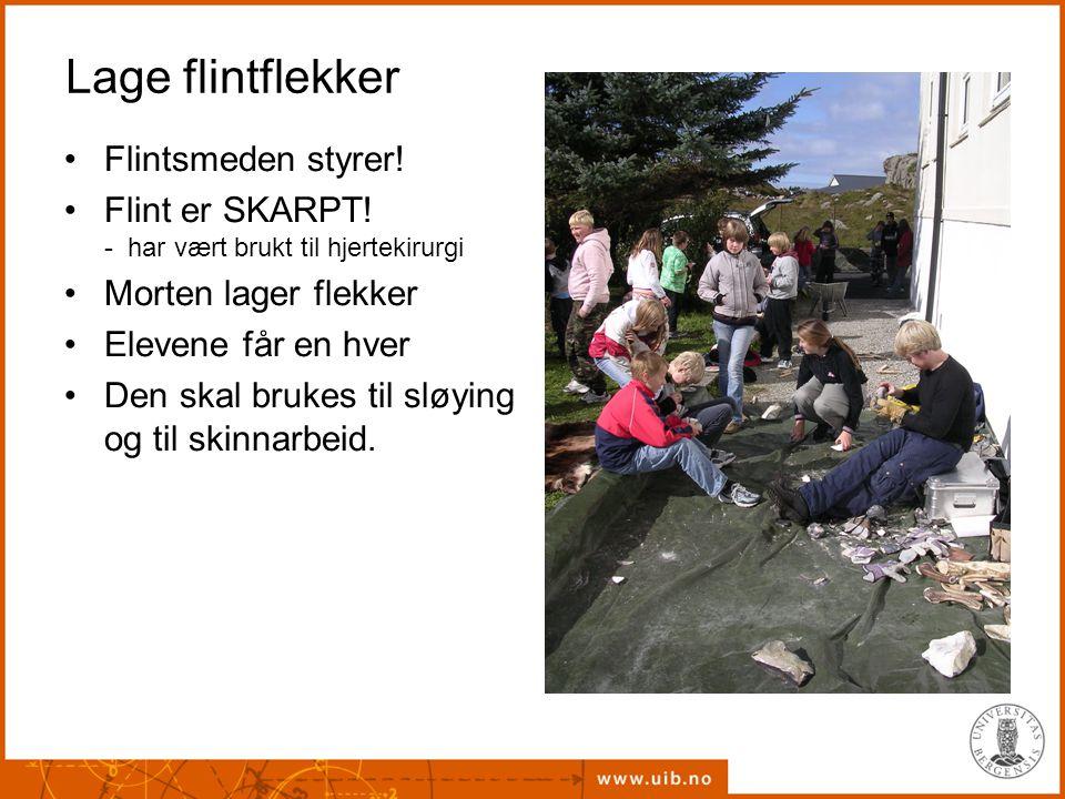Lage flintflekker Flintsmeden styrer!