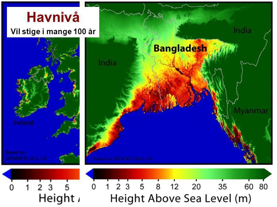 Havnivå Vil stige i mange 100 år