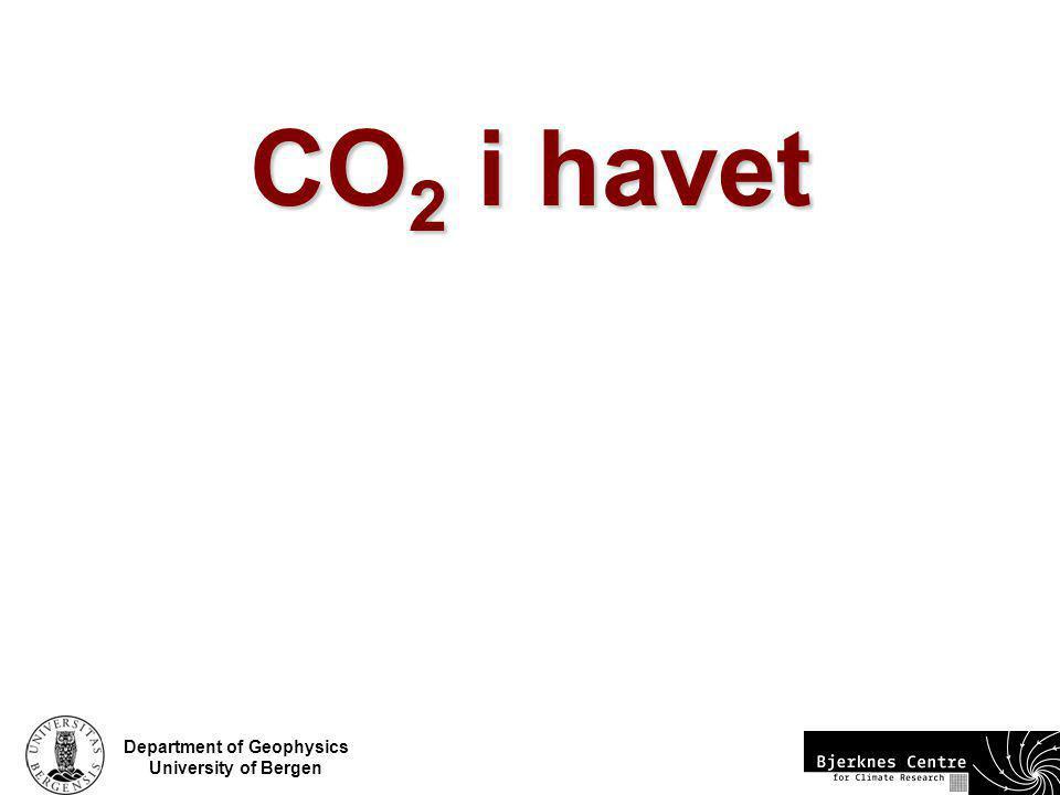 CO2 i havet