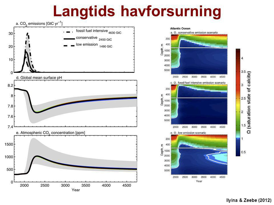 Langtids havforsurning