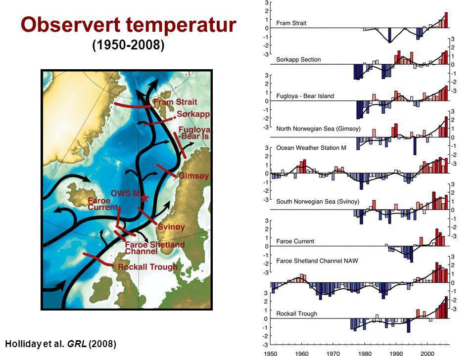 Observert temperatur (1950-2008)