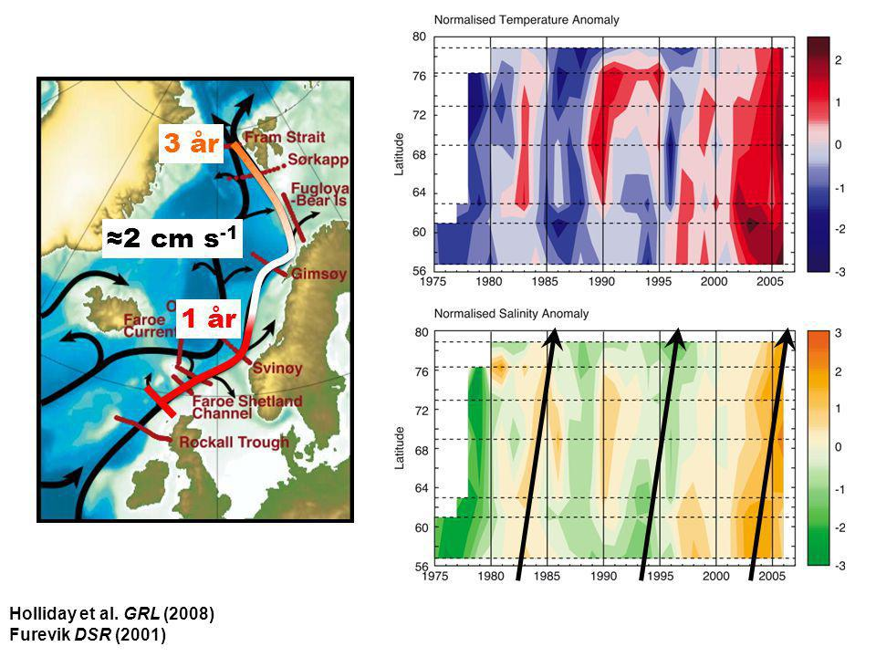 1 år 3 år ≈2 cm s-1 Holliday et al. GRL (2008) Furevik DSR (2001)