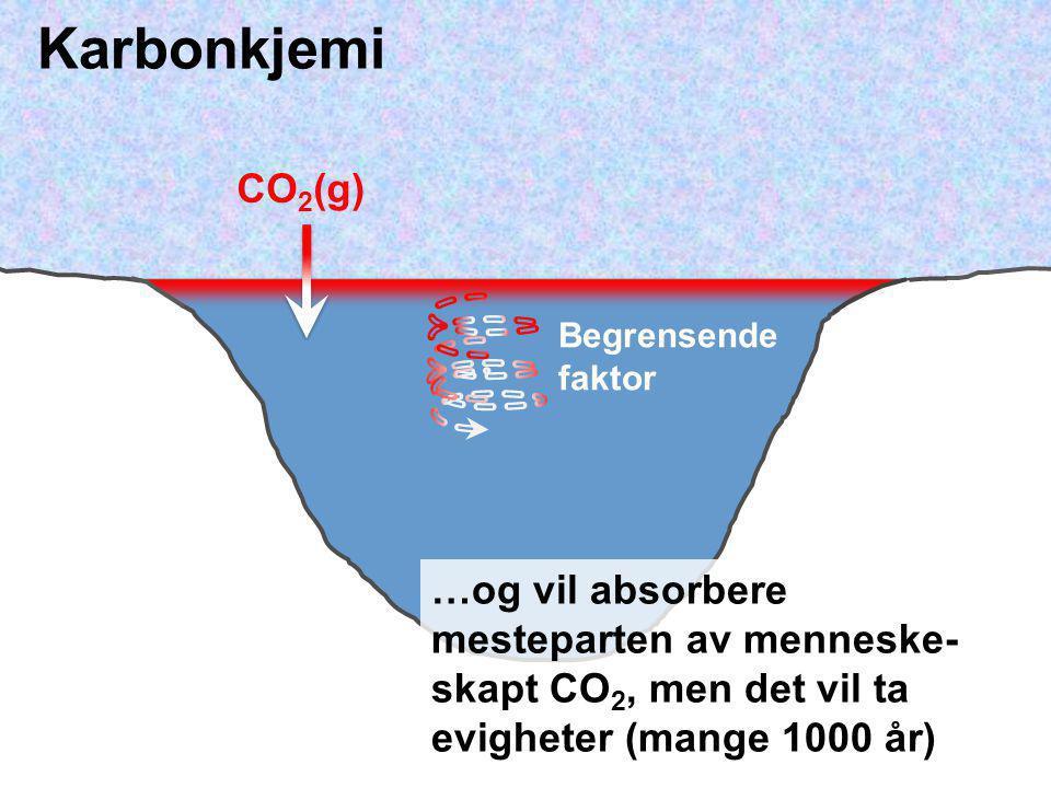 Karbonkjemi CO2(g) Begrensende faktor.