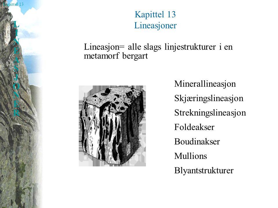 Kapittel 13 Lineasjoner. Lineasjon= alle slags linjestrukturer i en metamorf bergart. Minerallineasjon.