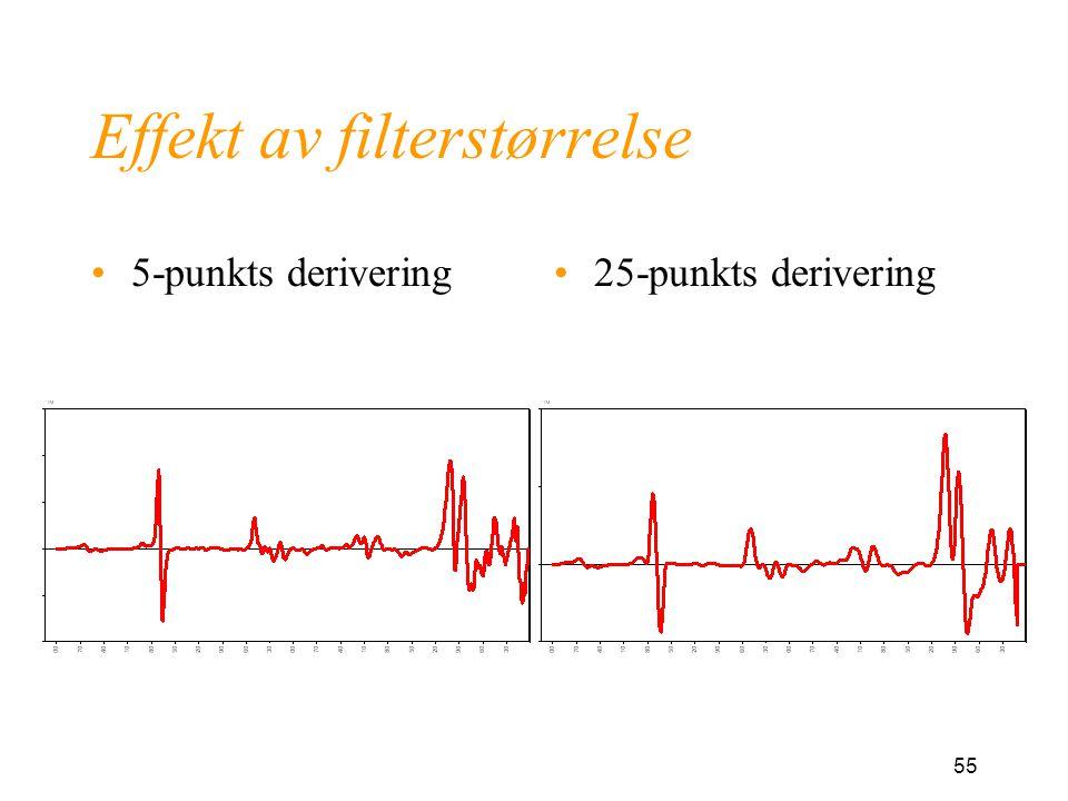 Effekt av filterstørrelse