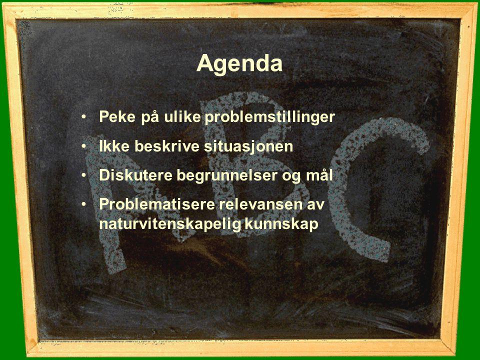 Agenda Peke på ulike problemstillinger Ikke beskrive situasjonen