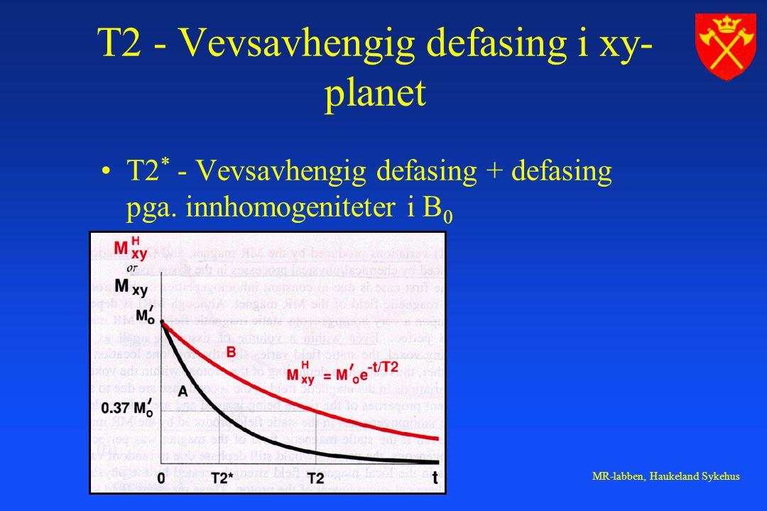 T2 - Vevsavhengig defasing i xy-planet