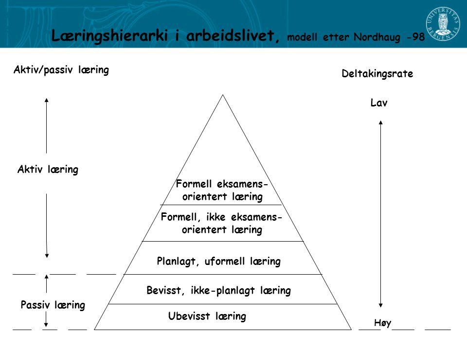 Læringshierarki i arbeidslivet, modell etter Nordhaug -98