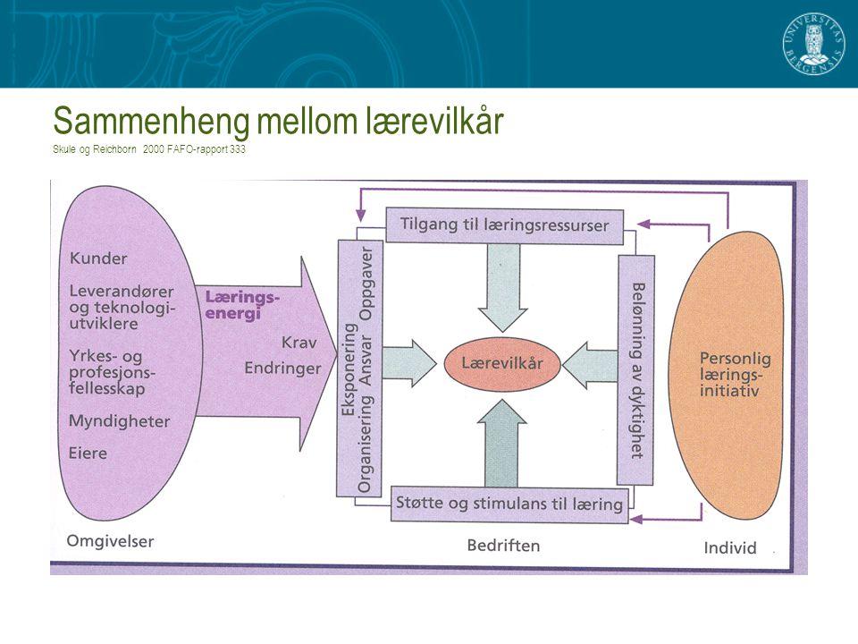 Sammenheng mellom lærevilkår Skule og Reichborn 2000 FAFO-rapport 333