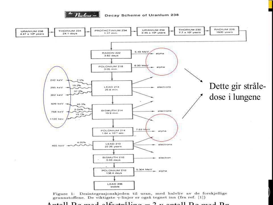 Dette gir stråle- dose i lungene Antall Bq med alfastråling = 3 x antall Bq med Rn
