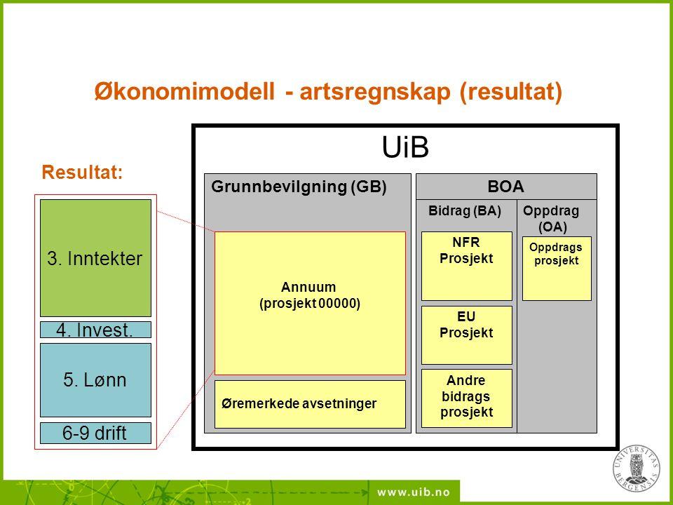 Økonomimodell - artsregnskap (resultat)