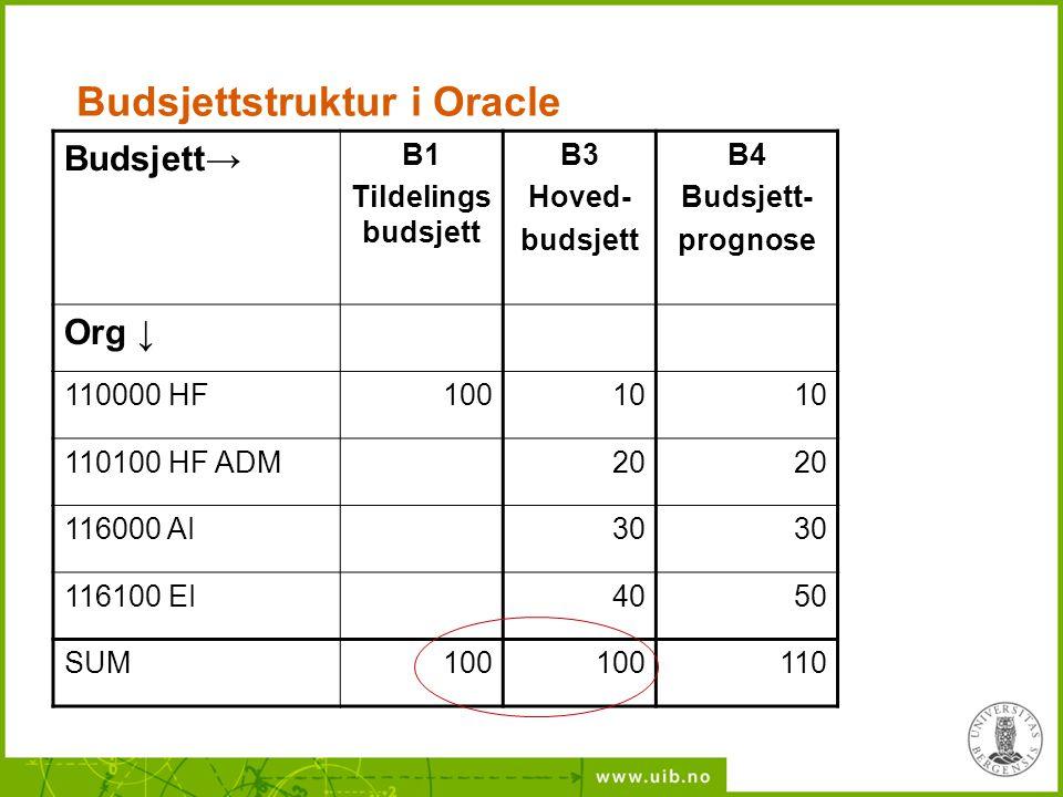 Budsjettstruktur i Oracle