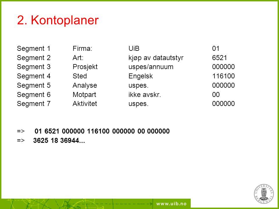 2. Kontoplaner Segment 1 Firma: UiB 01