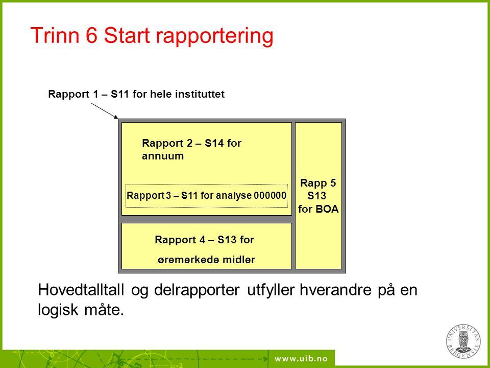Trinn 6 Start rapportering