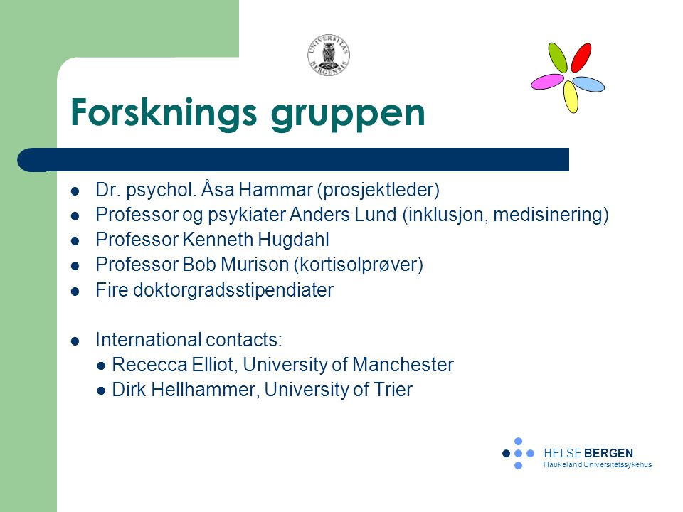 Forsknings gruppen Dr. psychol. Åsa Hammar (prosjektleder)