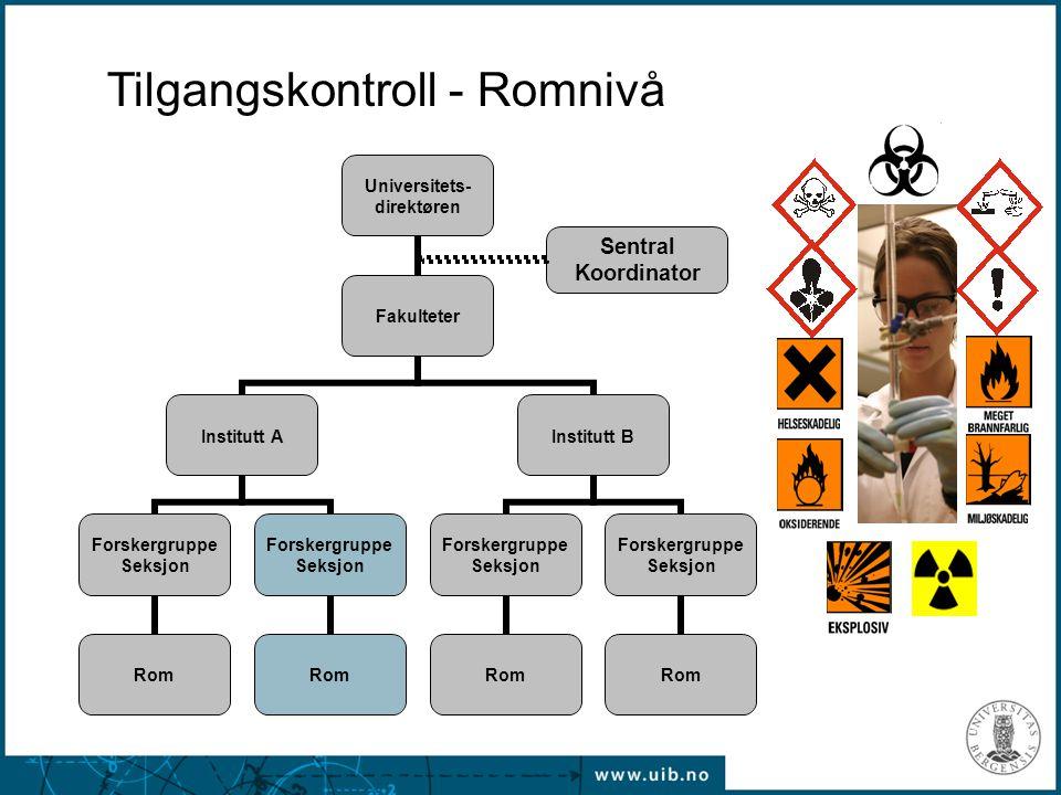 Tilgangskontroll - Romnivå