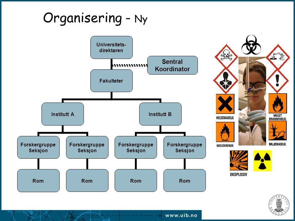 Organisering - Ny