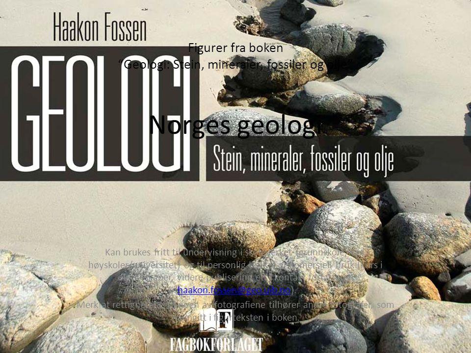 Figurer fra boken Geologi: Stein, mineraler, fossiler og olje Norges geologi