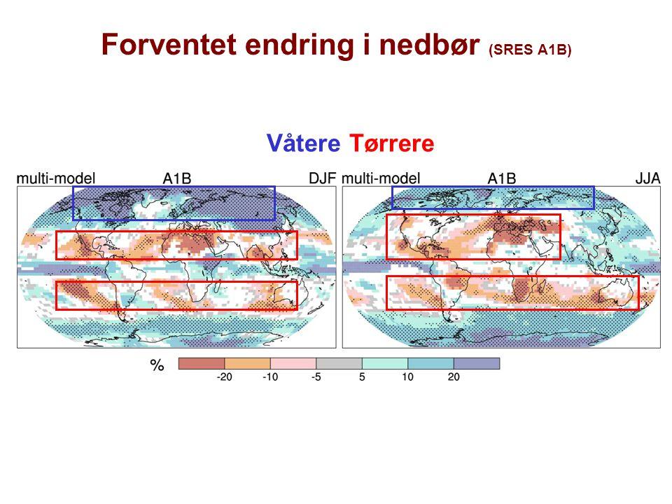 Forventet endring i nedbør (SRES A1B)