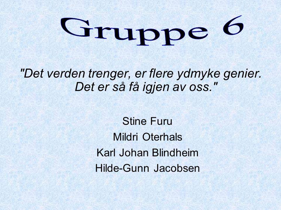 Gruppe 6 Det verden trenger, er flere ydmyke genier. Det er så få igjen av oss. Stine Furu. Mildri Oterhals.