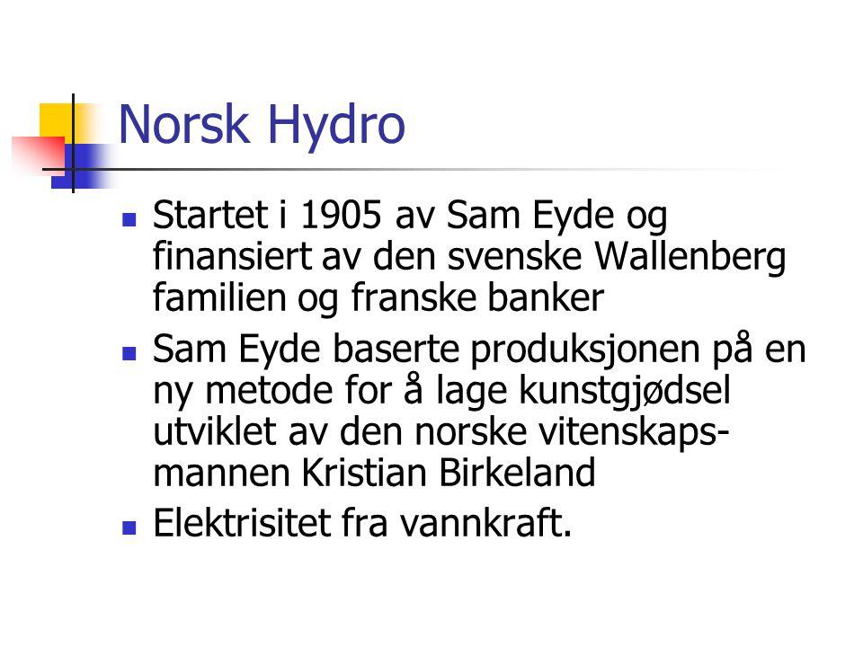 Norsk Hydro Startet i 1905 av Sam Eyde og finansiert av den svenske Wallenberg familien og franske banker.