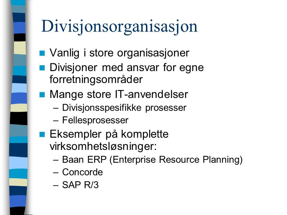Divisjonsorganisasjon