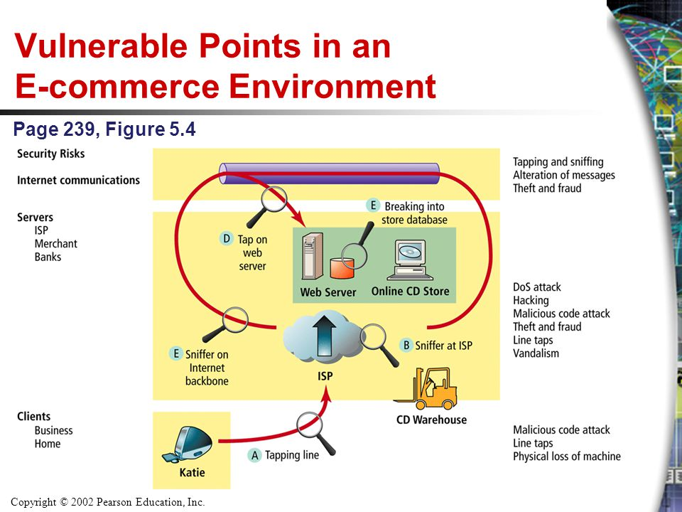 Vulnerable Points in an E-commerce Environment