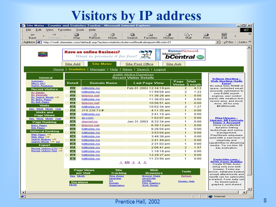 Visitors by IP address Prentice Hall, 2002