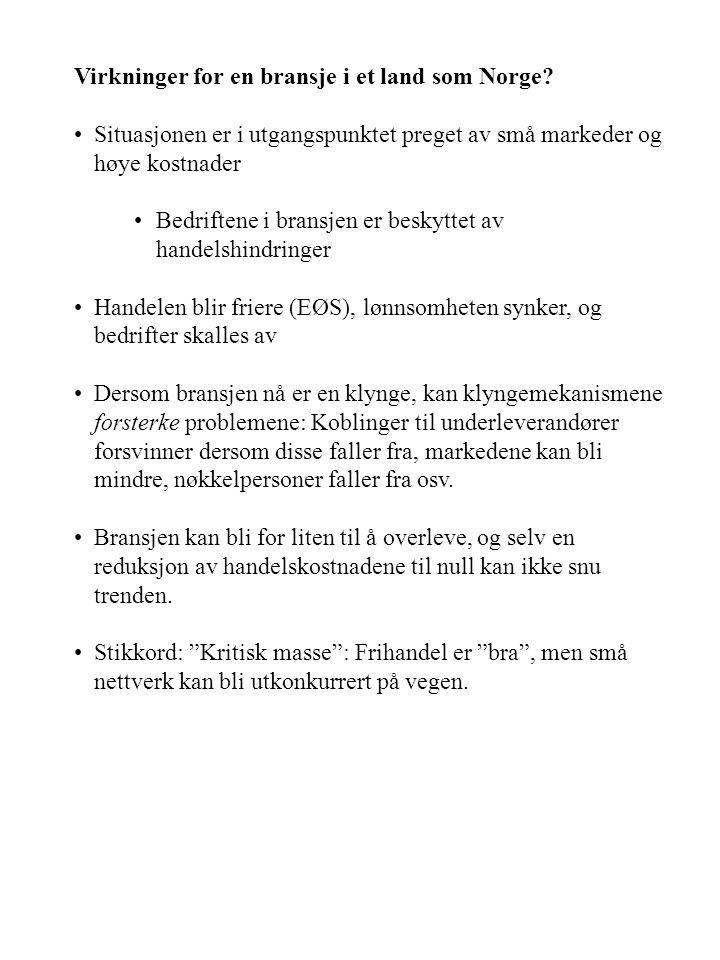 Virkninger for en bransje i et land som Norge