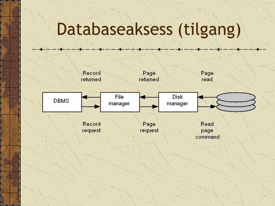 Databaseaksess (tilgang)