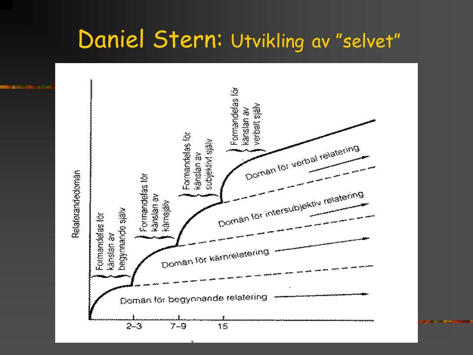 Daniel Stern: Utvikling av selvet