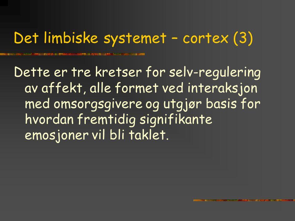 Det limbiske systemet – cortex (3)