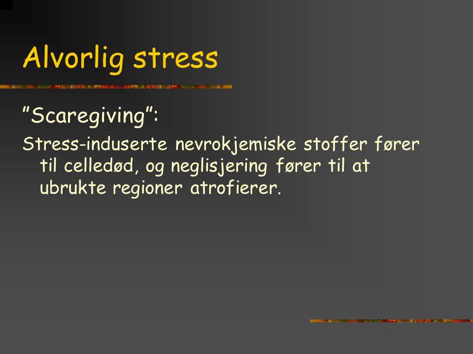Alvorlig stress Scaregiving :