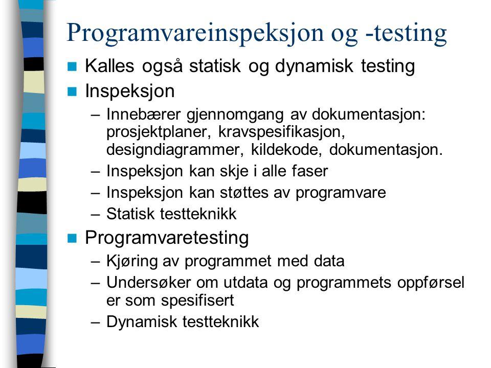 Programvareinspeksjon og -testing