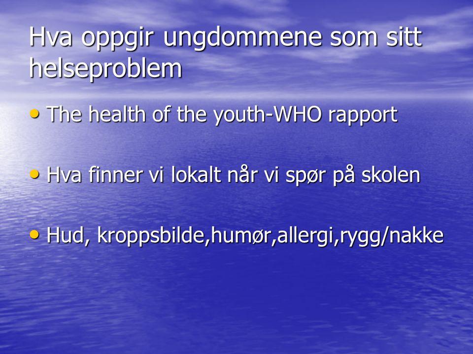 Hva oppgir ungdommene som sitt helseproblem