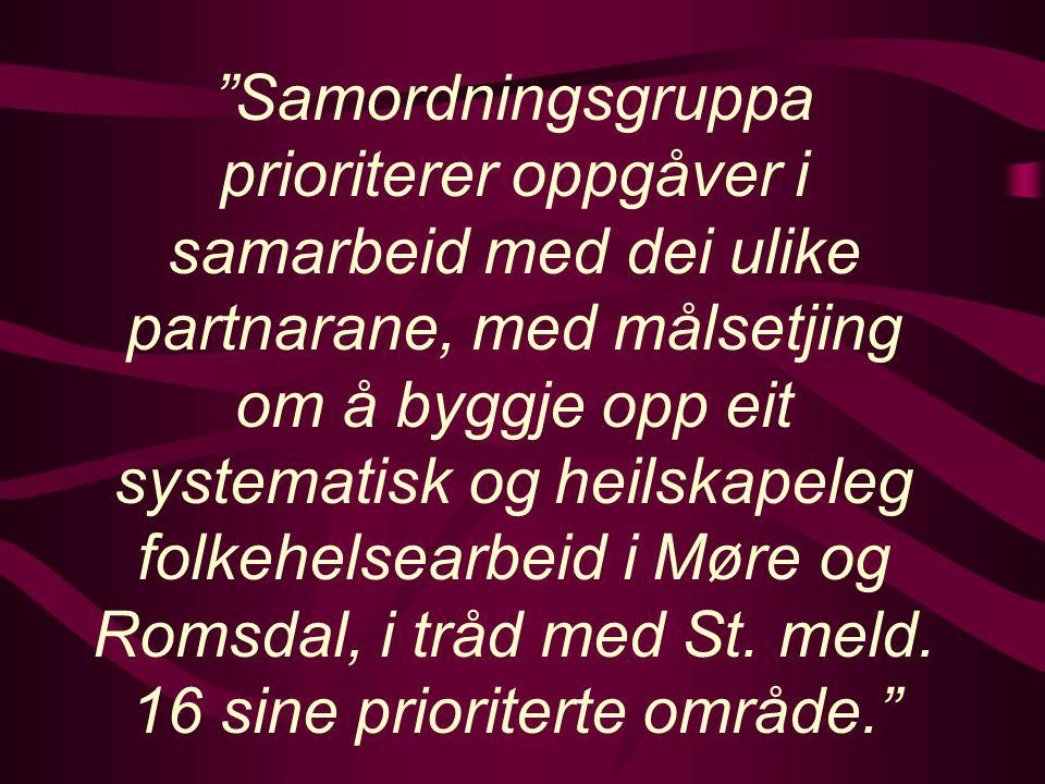 Samordningsgruppa prioriterer oppgåver i samarbeid med dei ulike partnarane, med målsetjing om å byggje opp eit systematisk og heilskapeleg folkehelsearbeid i Møre og Romsdal, i tråd med St.