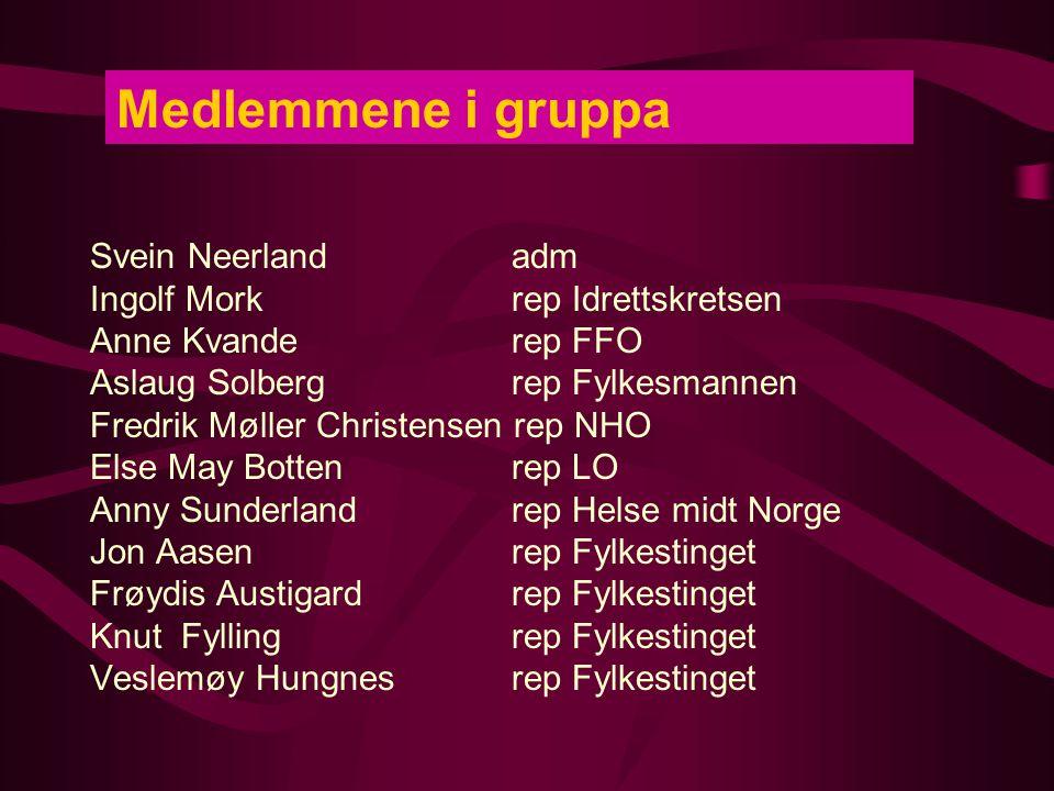 Medlemmene i gruppa