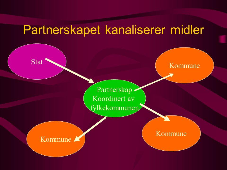 Partnerskapet kanaliserer midler