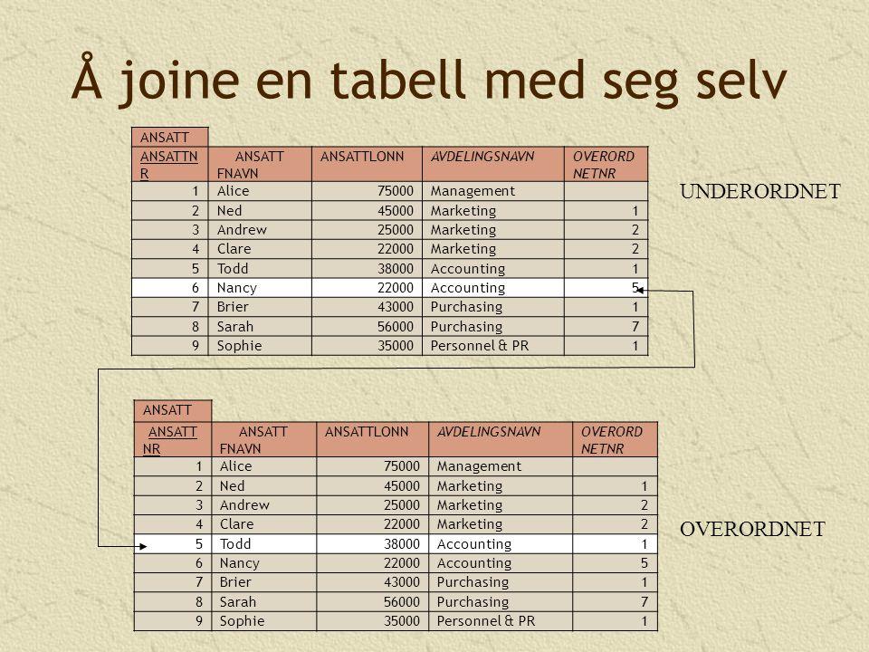Å joine en tabell med seg selv