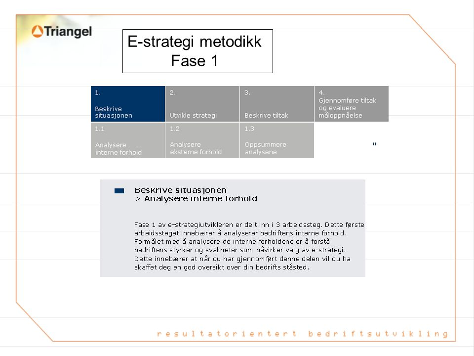 E-strategi metodikk Fase 1