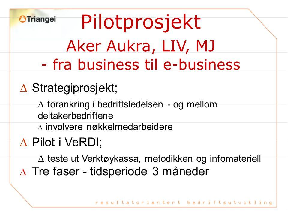 Pilotprosjekt Aker Aukra, LIV, MJ - fra business til e-business