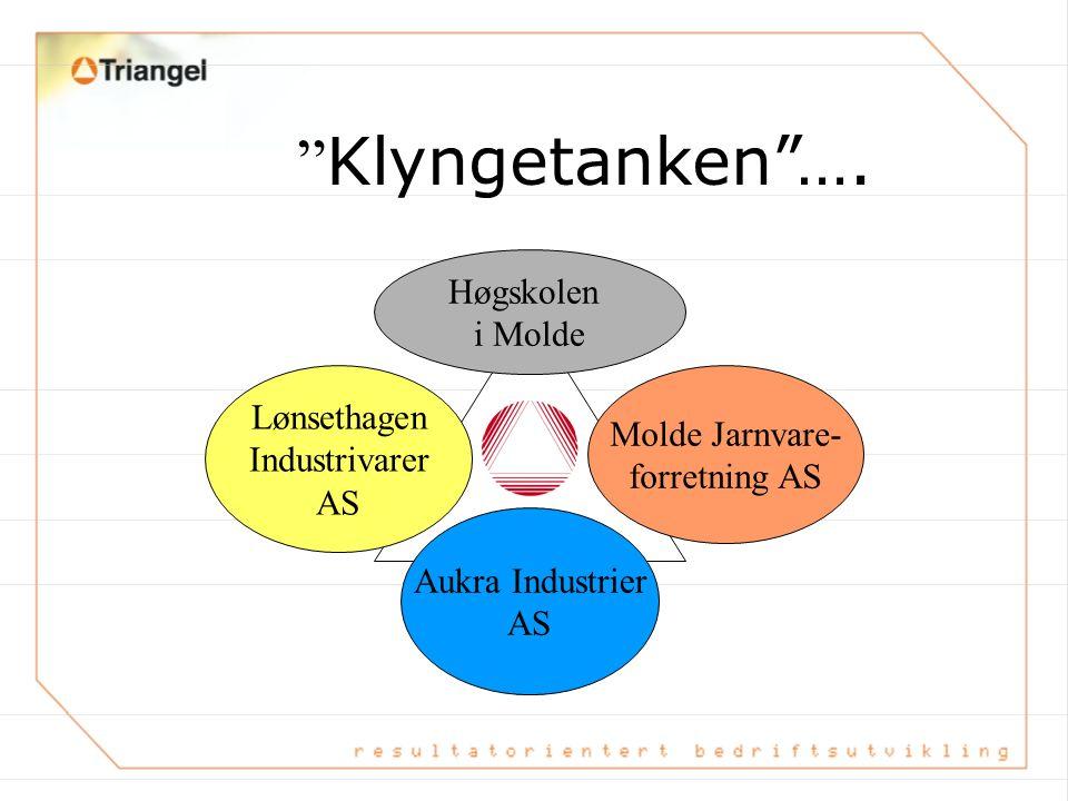 Klyngetanken …. Høgskolen i Molde Lønsethagen Molde Jarnvare-