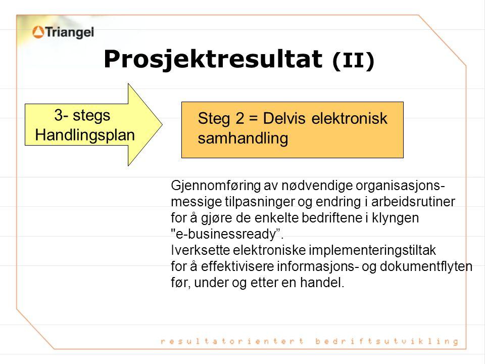 Prosjektresultat (II)
