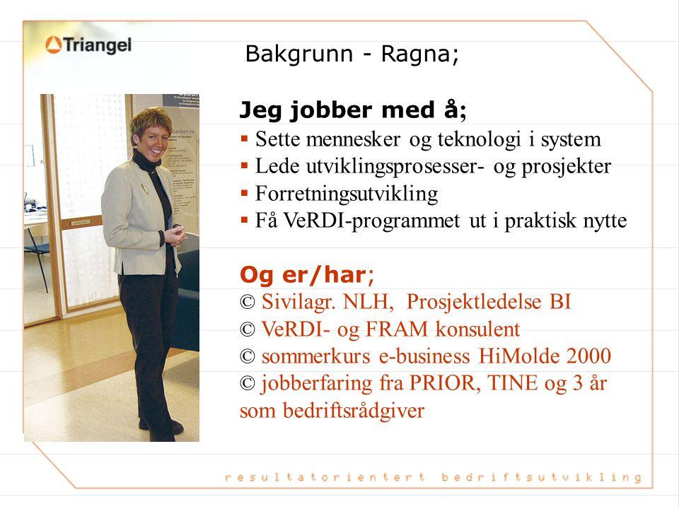 Bakgrunn - Ragna; Jeg jobber med å; Sette mennesker og teknologi i system. Lede utviklingsprosesser- og prosjekter.