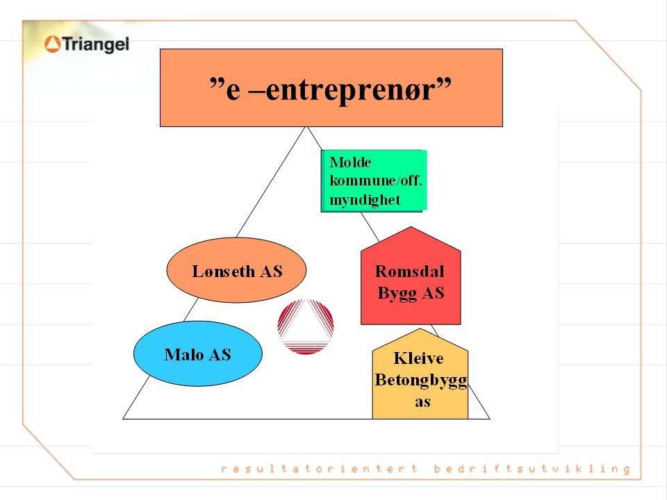 e –entreprenør