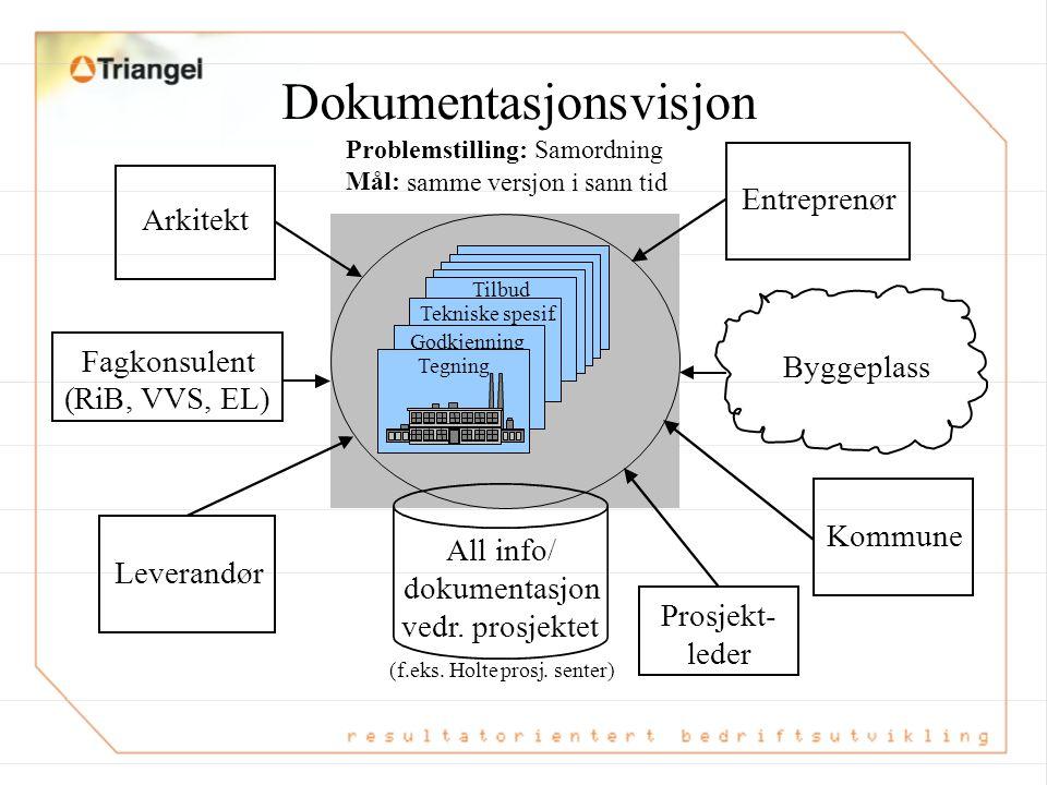 Dokumentasjonsvisjon