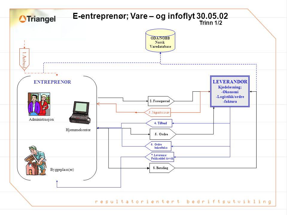 E-entreprenør; Vare – og infoflyt 30.05.02